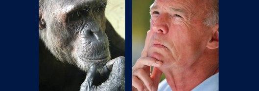 Human Vs Chimp