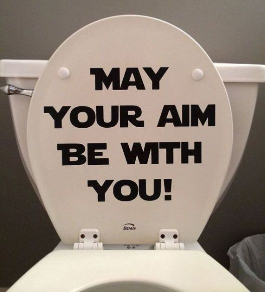 Meme on a Toilet Seat : May Your Aim Be with You