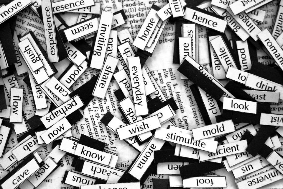 writer_write_a_one_sentence_story