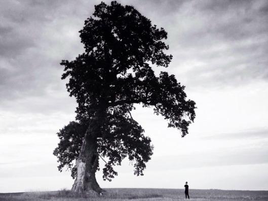 Black and White Landscape Scale Photo